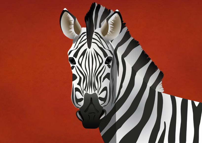 illustratie van een zebra tegen een rode achtergrond