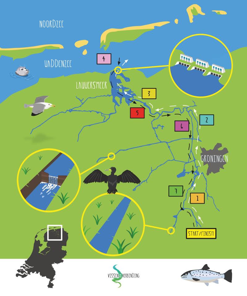 speelbord met daarop het leefgebied van de zeeforel in het noorden van Nederland